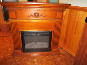 Free standing Fireplace electric