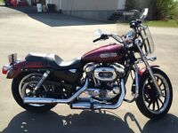 2008 Sportster Low 1200. Cheapest on Kijiji!!