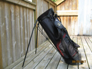 Cobra Stand Bag, Double Loop Harness (Clean)