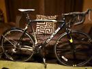 Col de turini  road bike