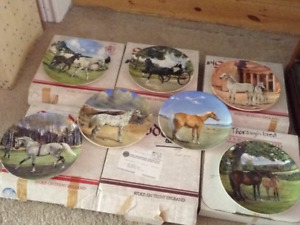 ceramic horse collectible plates
