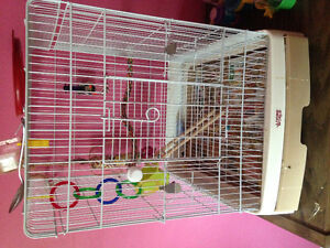 Bird cages with dishes and a perch