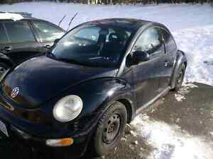 Black beetle with winter tires