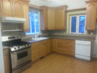 3 bedroom house for rent in Georgetown