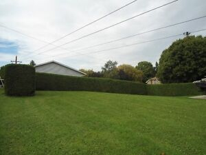 MOUNT FOREST LAND FOR SALE