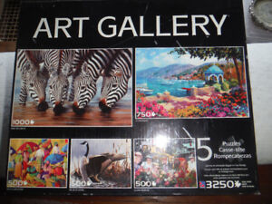 Puzzles – 5 puzzles in one $10.00