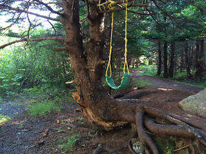 Recycled Rope Swings