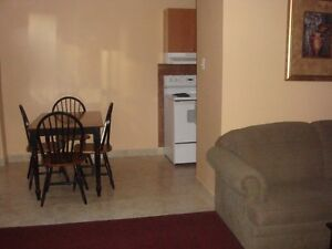 Two Bedroom, Downtown, Fully Furnished