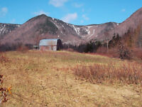 Beautiful cleared, level 5 acre lot..Sugar Loaf/Aspy Bay
