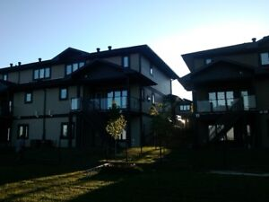 Beautiful Walkout Apt.,furnished, overlooking greenspace-Oct 1st