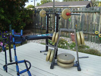 Weights,Bench,Plate tree, and Door Frame Pull up bar Package