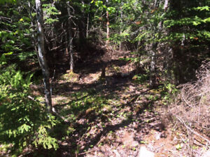 771 West Porters Lake Road - Approved building lot For Sale