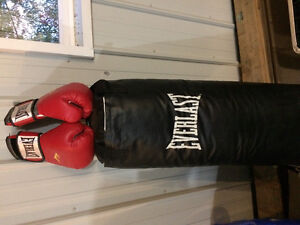 Everlast punching bag and boxing gloves
