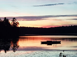 Cottage Rental Muskoka - Waterfront Paradise
