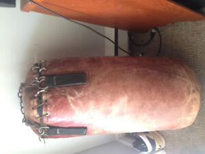 Punching bag and sparring gear