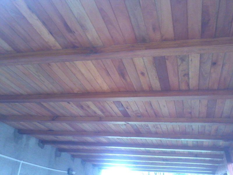 Machimbre sin nudos eucaliptus Grandis p entrepisos / techos. fabrica