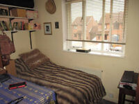 A single room to rent with immediate effect near Addenbrookes