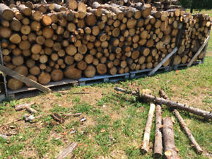 Firewood for sale $135/cord   3 1/2 cords available