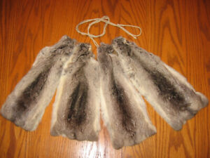 Chinchilla pelts