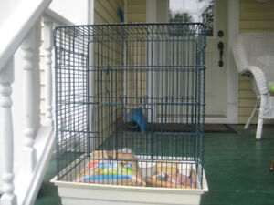 Large bird cage  with toys and food