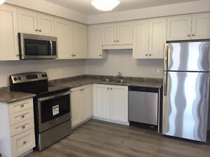 AVAILABLE IMMEDIATELY! Brand new freehold townhouse for Rent Kitchener / Waterloo Kitchener Area image 3