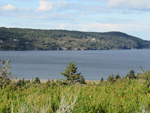 A LITTLE BIT OF PARADISE…19 JIM WALL'S ROAD..OCEAN VIEWS St. John's Newfoundland image 8