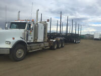 Experience log tuck driver  needed