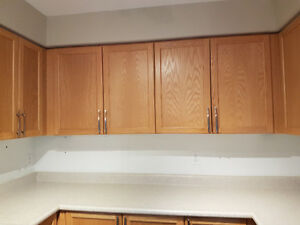 PERFECT CONDITION KITCHEN CABINETS - $500