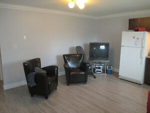 1 Bedroom suite renovated in Richmond BC No 5 & Cambie Shell rd