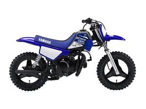 2017 Yamaha PW50 (2-Stroke)