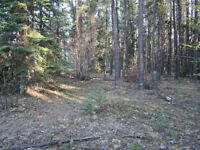 lakeview lot in cranberry portage