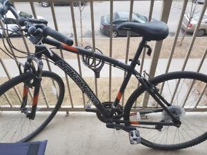 Nakamura commuter bike