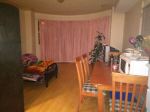 One bedroom basement suite available - Surrey CAD750