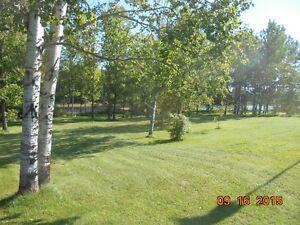 maison de campagne habitable a l année Négociable Lac-Saint-Jean Saguenay-Lac-Saint-Jean image 2