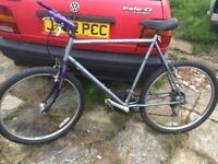 Mountain bike. Raleigh gritstone 21