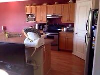 2 BEDROOM, PET FRIENDLY, UTILITIES INCLUDED!!!  MOVE IN READY