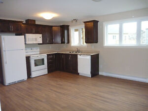 2 Bedroom Apartment in Paradise: Washer, Dryer, Dishwasher: $900