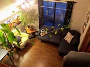 April 1 – One bedroom + loft apartment, downtown Dartmouth