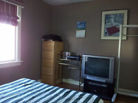 Student room in large house with 3 bathrooms, close to UNB