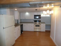 2 Bedroom Basement Suite - Clareview