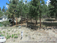 LAKEVIEW LOT IN PEACHLAND