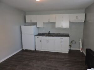 1 Bedroom apartment in the heart of Thorold