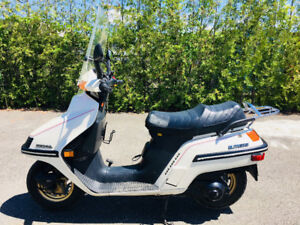 1986 Honda Elite CH250 with only 3324 kms!