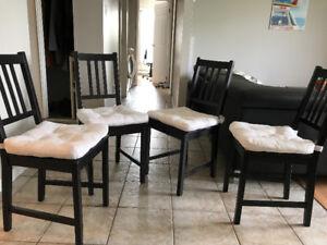 Chaises de table avec coussins