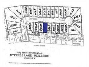 FULLY SERVICED VACANT LOT IN INGLESIDE