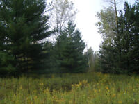 100 Acres of Woods, or 100 acres as an ESTATE LOT ?
