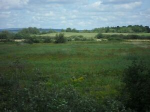 2 lots-Zoned Farmland-Great Investment!Many options!Location!!