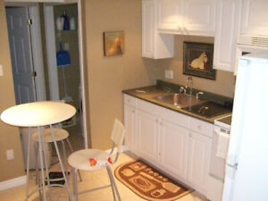 QUEENS OR ST LAWRENCE ..NOT YOUR AVERAGE ROOM RENTAL