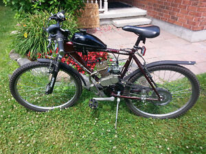 Motorized 80cc Raleigh Bicycle