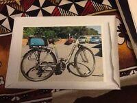 Men's 19 inch 24 gear Dawes Bike